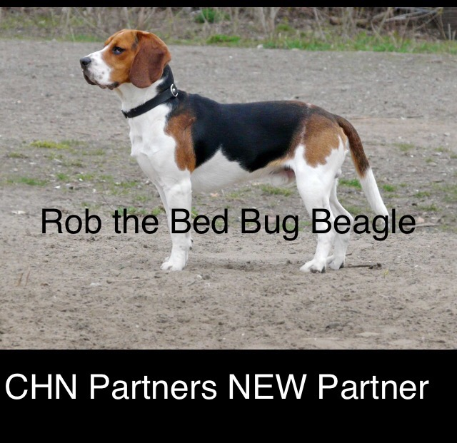 CHN Partners hardest working partner