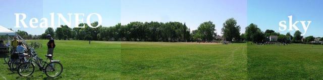 Loew Park