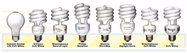 The Compact Fluorescent Bulbs That Were Tested