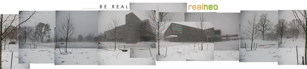 Cleveland Museum of Art winter REALNEO logo