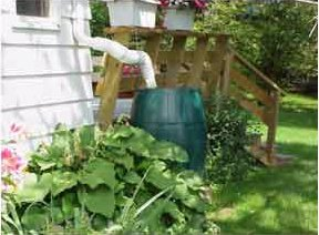 Rain Barrel Photo